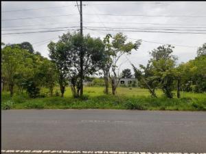 Terreno En Ventaen Herrera, Herrera, Panama, PA RAH: 20-12435