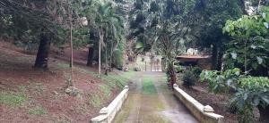 Terreno En Ventaen San Carlos, El Espino, Panama, PA RAH: 20-12595