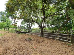 Terreno En Ventaen Aguadulce, Aguadulce, Panama, PA RAH: 21-258