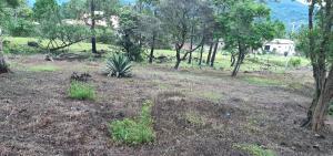 Terreno En Ventaen Boquete, Alto Boquete, Panama, PA RAH: 21-324