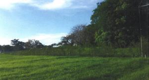 Terreno En Ventaen Pedasi, Pedasi, Panama, PA RAH: 21-455