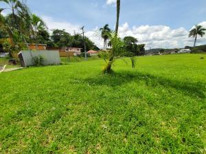 Terreno En Alquileren Panama, Ancon, Panama, PA RAH: 21-607
