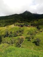 Terreno En Ventaen Gualaca, Los Angeles, Panama, PA RAH: 21-753
