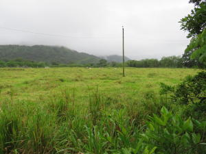 Terreno En Ventaen David, David, Panama, PA RAH: 21-1014