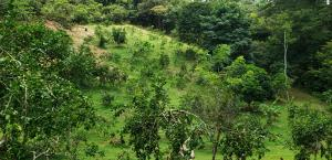 Terreno En Ventaen Capira, Villa Carmen, Panama, PA RAH: 21-1372