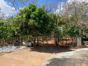Terreno En Ventaen Panama, Pacora, Panama, PA RAH: 21-1640