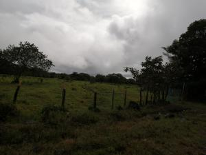 Terreno En Ventaen Boquete, Boquete, Panama, PA RAH: 21-1677