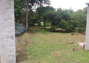 Terreno En Ventaen San Carlos, San Carlos, Panama, PA RAH: 21-1708