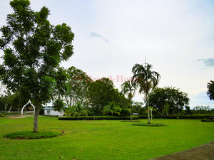 Terreno En Ventaen Cocle, Cocle, Panama, PA RAH: 21-1529