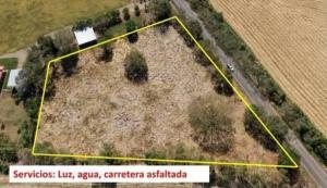 Terreno En Alquileren Las Tablas, Las Tablas, Panama, PA RAH: 21-2065
