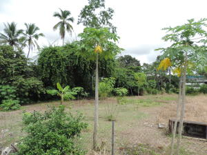 Terreno En Ventaen Panama, Juan Diaz, Panama, PA RAH: 21-2081