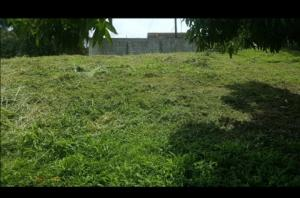 Terreno En Ventaen Panama, Juan Diaz, Panama, PA RAH: 21-2129