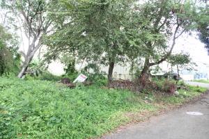 Terreno En Ventaen Panama, Parque Lefevre, Panama, PA RAH: 21-2145