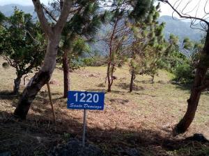 Terreno En Ventaen San Carlos, San Carlos, Panama, PA RAH: 21-2239