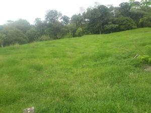 Terreno En Ventaen La Chorrera, Chorrera, Panama, PA RAH: 21-2262