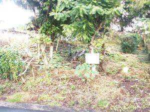 Terreno En Ventaen Panama, Rio Abajo, Panama, PA RAH: 21-2294