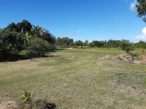 Terreno En Ventaen San Carlos, San Carlos, Panama, PA RAH: 21-2467
