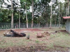 Terreno En Ventaen Panama Oeste, Capira, Panama, PA RAH: 21-2487