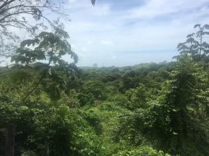 Terreno En Ventaen San Carlos, San Carlos, Panama, PA RAH: 21-2579