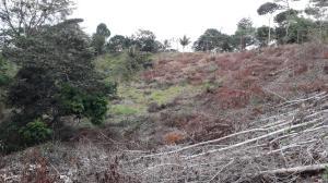 Terreno En Ventaen Capira, Villa Carmen, Panama, PA RAH: 21-2588