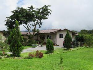 En Construccion En Ventaen Tierras Altas, Volcan, Panama, PA RAH: 21-2650