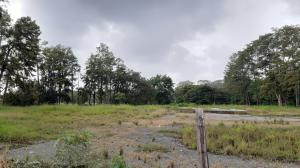 Terreno En Ventaen David, David, Panama, PA RAH: 21-2788