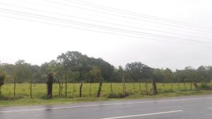 Terreno En Ventaen Chiriqui, Chiriqui, Panama, PA RAH: 21-2807