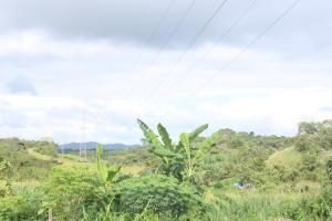 Terreno En Ventaen Panama, Milla 8, Panama, PA RAH: 21-2964