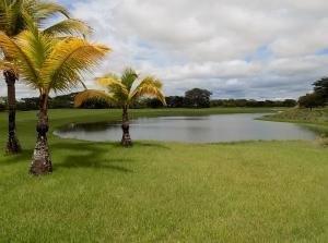 Terreno En Ventaen Rio Hato, Buenaventura, Panama, PA RAH: 21-2983