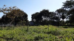 Terreno En Ventaen David, David, Panama, PA RAH: 21-3149