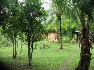 Terreno En Ventaen Penonome, Tulu, Panama, PA RAH: 21-3192
