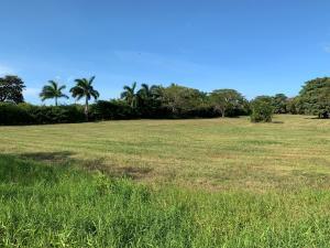 Terreno En Ventaen Pedasi, Pedasi, Panama, PA RAH: 21-3250