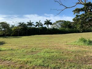 Terreno En Ventaen Pedasi, Pedasi, Panama, PA RAH: 21-3251