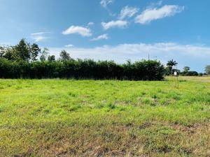 Terreno En Ventaen Pedasi, Pedasi, Panama, PA RAH: 21-3253