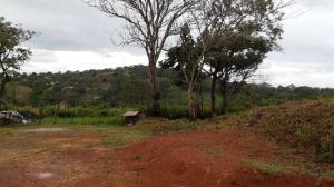 Terreno En Ventaen La Chorrera, Chorrera, Panama, PA RAH: 21-3307