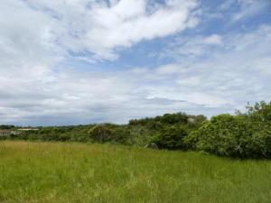 Terreno En Ventaen San Carlos, San Carlos, Panama, PA RAH: 21-3603