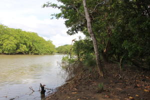Terreno En Ventaen Chame, Punta Chame, Panama, PA RAH: 21-4003