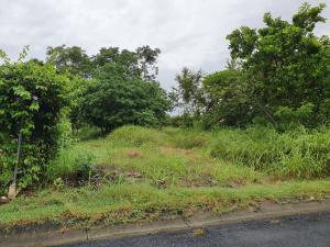 Terreno En Ventaen Chame, Coronado, Panama, PA RAH: 21-4397