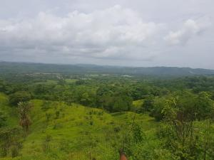 Terreno En Ventaen Chepo, Las Canitas, Panama, PA RAH: 21-4398