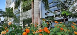 Apartamento En Alquileren Panama, Santa Maria, Panama, PA RAH: 21-4687