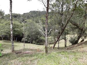 Terreno En Ventaen Chame, Sora, Panama, PA RAH: 21-4797