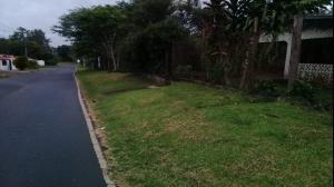 Terreno En Ventaen Panama Oeste, Capira, Panama, PA RAH: 21-5161