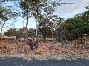Terreno En Ventaen Chame, Coronado, Panama, PA RAH: 21-5272