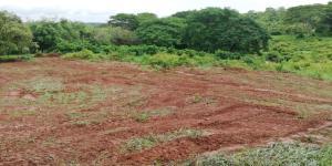 Terreno En Ventaen Chitré, Chitré, Panama, PA RAH: 21-5288