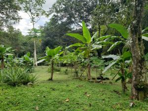 Terreno En Ventaen Panama, Las Mananitas, Panama, PA RAH: 21-5315