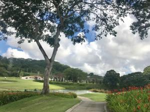 Terreno En Ventaen Panama, Brisas Del Golf, Panama, PA RAH: 21-5425