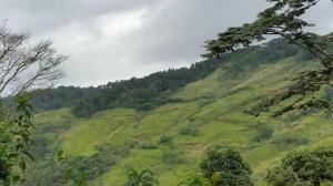 Terreno En Ventaen Pacora, Cerro Azul, Panama, PA RAH: 21-9730