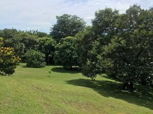 Terreno En Ventaen San Carlos, San Carlos, Panama, PA RAH: 21-5518