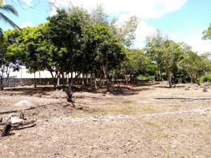 Terreno En Ventaen Baru, Progreso, Panama, PA RAH: 21-3065