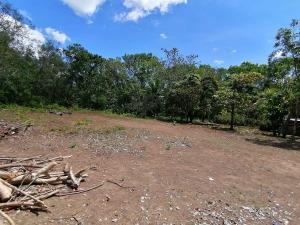 Terreno En Ventaen San Lorenzo, Horconcitos, Panama, PA RAH: 21-5635